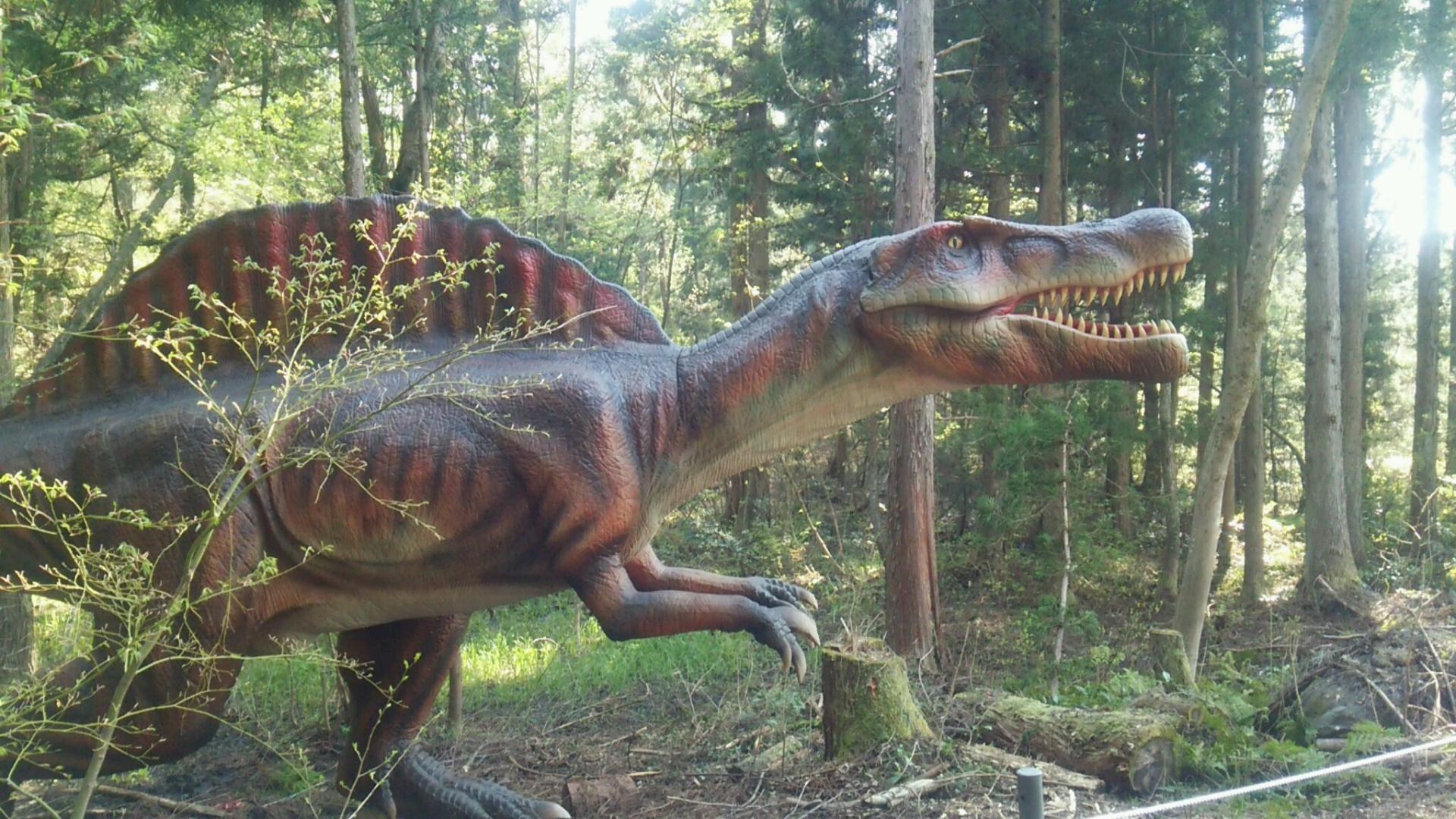 恐竜 ツアー 福井 博物館